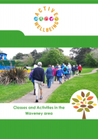 Waveney activity menu