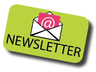 Stakeholder Insight Newsletters
