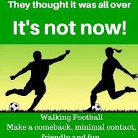 Referee (Walking Football)