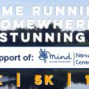 Henham Park Festival of Running - 10k, 5k, 1k Fun Run Icon
