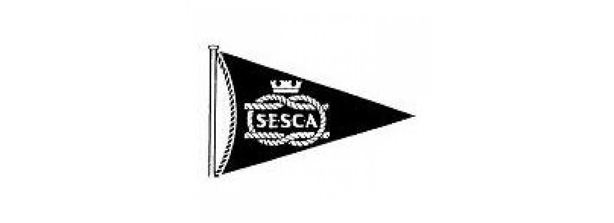 SESCA's '8th Antigua Sailing Day Regatta' Banner