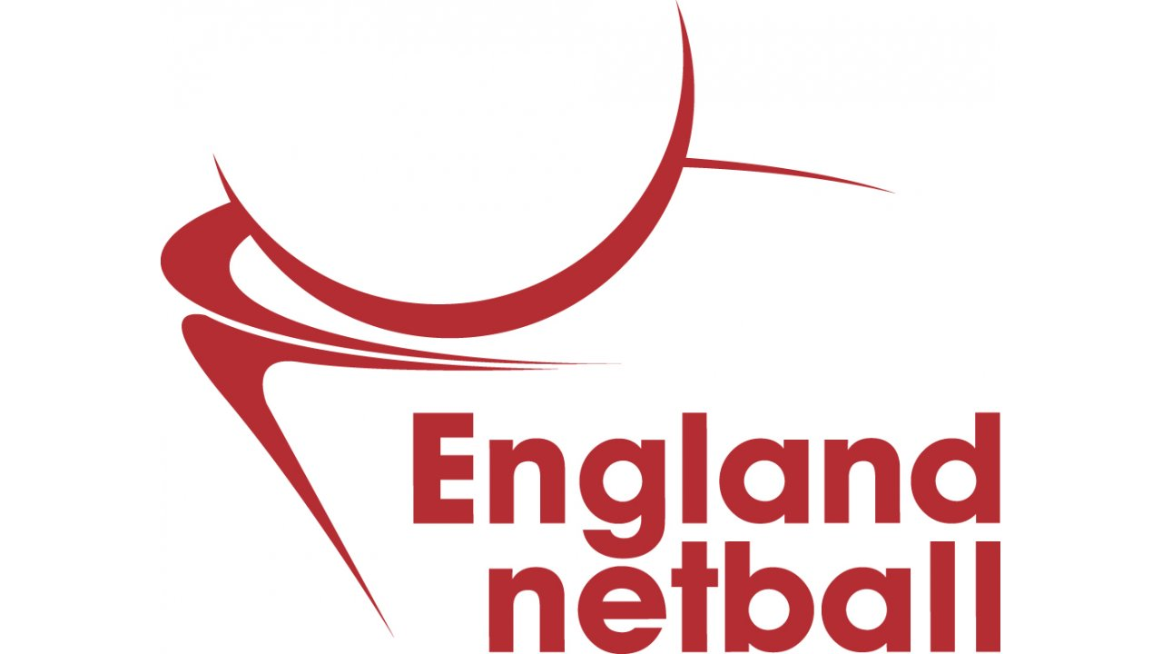 Workplace Netball Banner